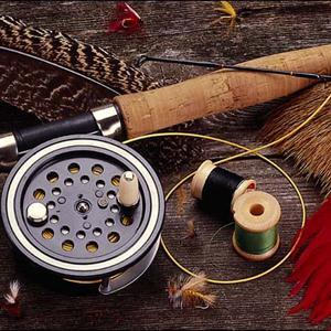 Охотничьи и рыболовные магазины Ртищево